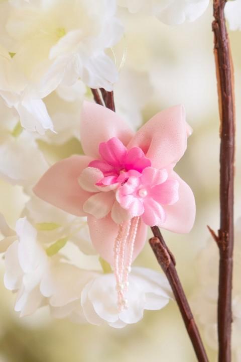 La Coiffe de Sakura